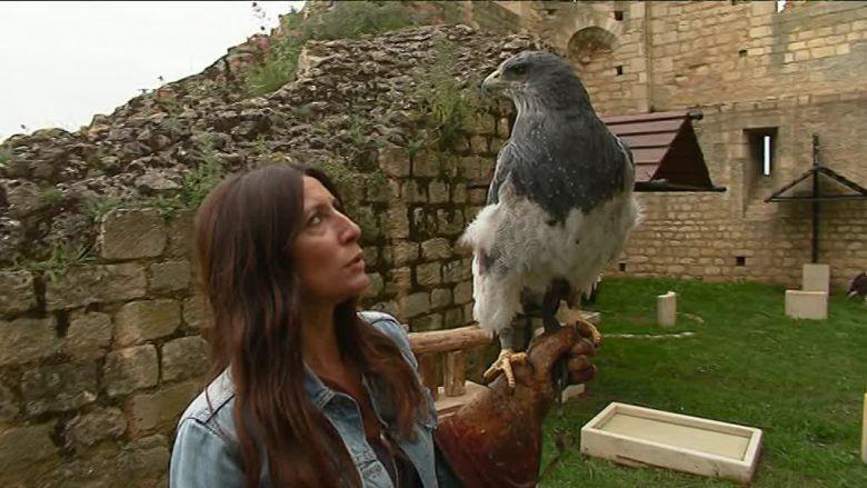Céline Petit, la responsable animalière, avec l'un des aigles du spectacle. / © Stéphane Bourin, F3 Poitou-Charentes