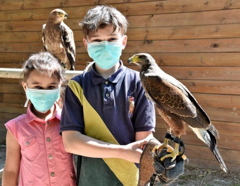 depuis la fin du confinement, le fauconnier propose des baptêmes de fauconnerie. / © Ioann Latscha