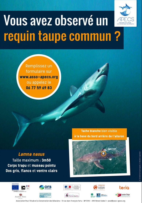 Appel aux usagers de la mer / © APECS